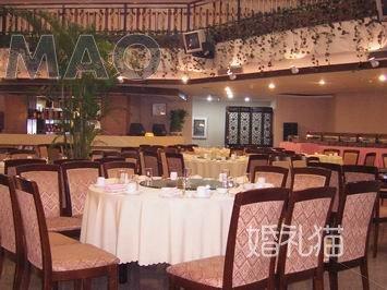 金泰绿洲大酒店-