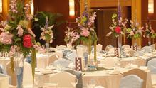 怡龙苑饭店