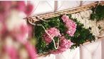 紫荆花婚礼会馆-